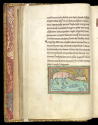 Elephants, In A Bestiary